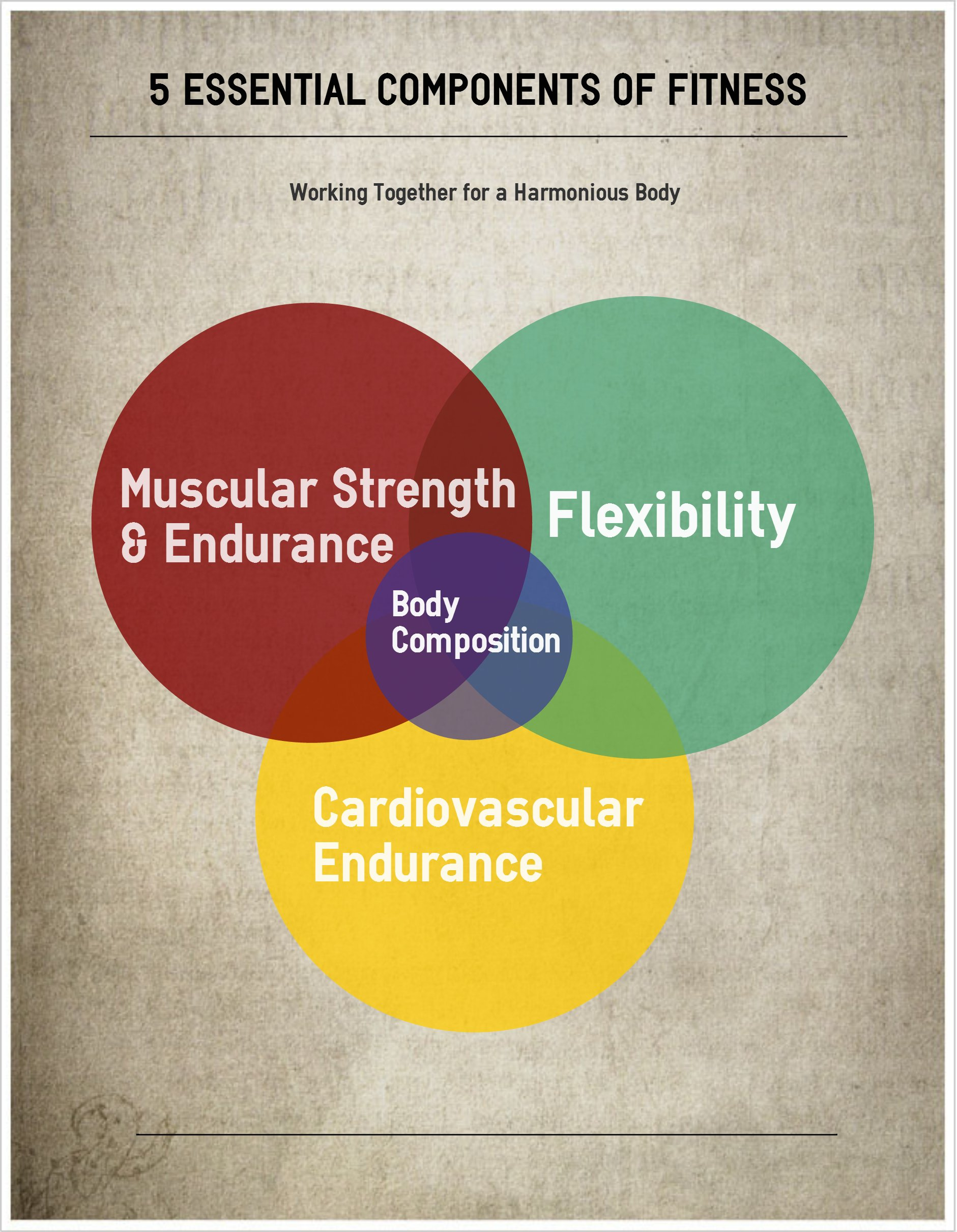 5 components of fitness essay The five components of fitness consist of this component of fitness is the amount of force a muscle (or muscle group) is able to move during a single repetition.