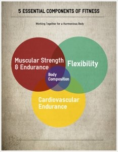 5 Components of Fitness - Venn Diagram Infographic